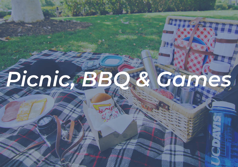 Picnic, BBQ and games 2020